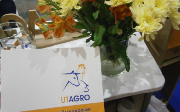 UTAGRO at the XIth International Congress