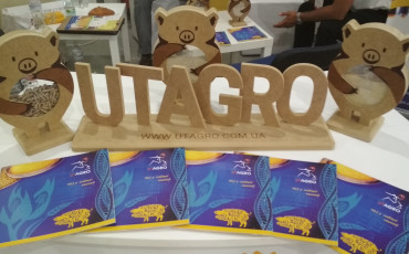 UTAGRO at Congress